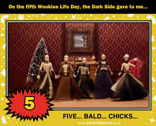 On the fifth Wookiee Life Day, the Dark Side gave to me: FIVE - BALD - CHICKS...